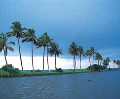 Honeymoon Tour To Idukki